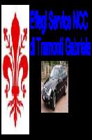 Autista noleggio NCC - Firenze