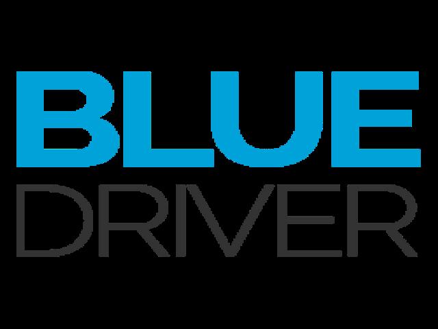 Blue Driver: Personal driver a Torino